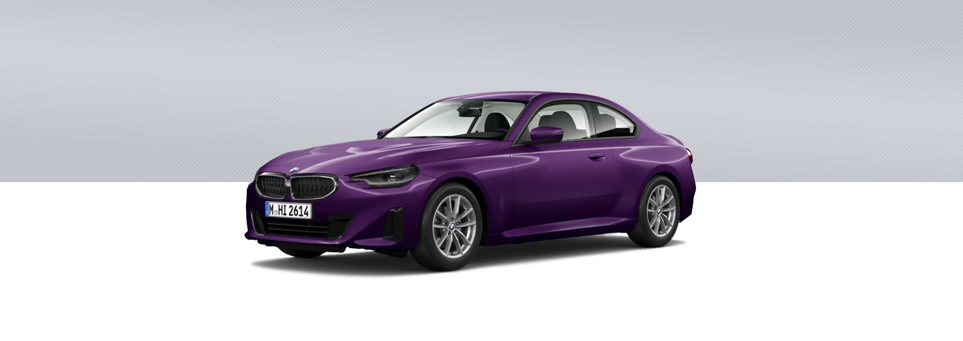BMW Nuevo Serie 2 Coupé