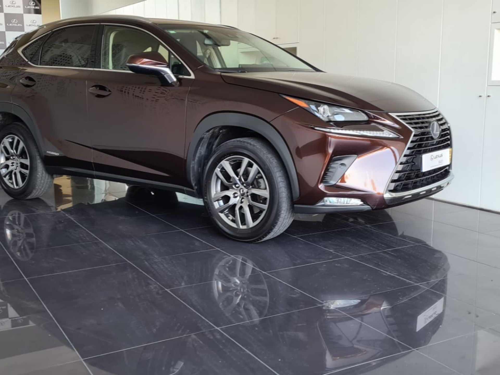 Lexus NX 2.5 300H 4X2 Executive Plus usada Lisboa