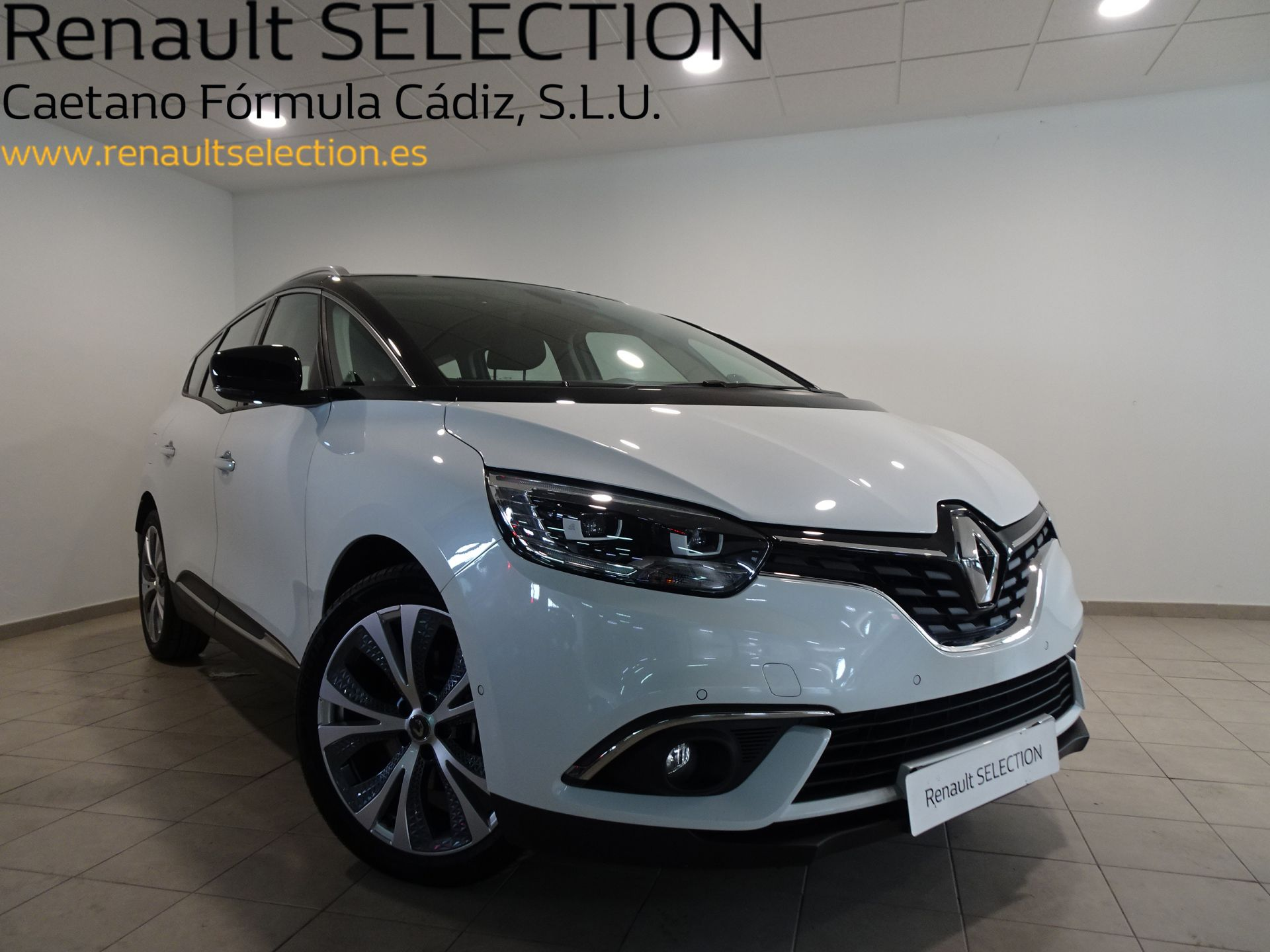 Renault Scenic Zen Blue dCi 110 kW (150CV) segunda mano Cádiz